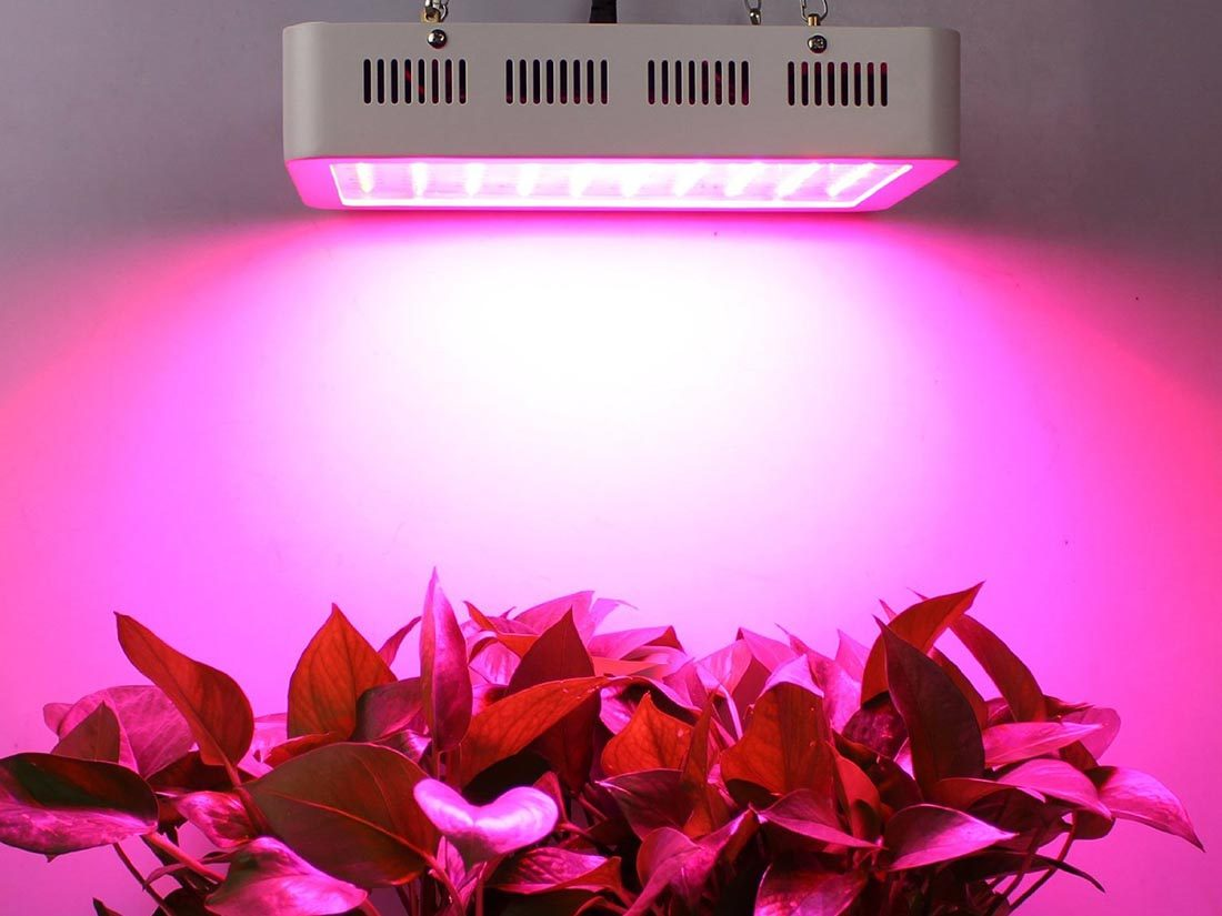 Galaxyhydro Led Grow Plant Review A Full Spectrum For