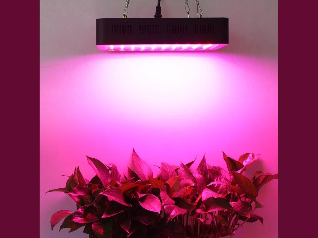 Lightmetunnel LED Grow Light