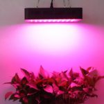 Lightmetunnel LED Grow Light